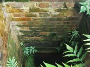 覗き込むと貯水槽部分を見ることができる