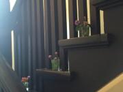 サンルームの籐椅子
